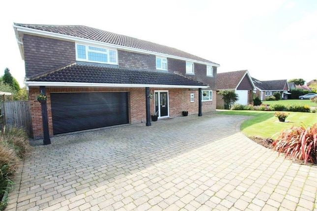 Thumbnail Detached house for sale in Thorne Crescent, Bexhill-On-Sea, East Sussex