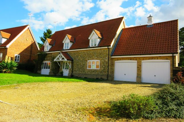 Thumbnail Detached house to rent in Chalk Way, Methwold, Thetford