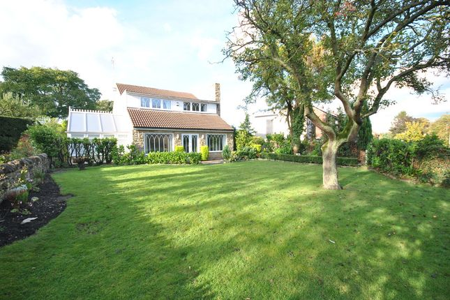 Thumbnail Detached house for sale in New Road, Firbeck, Worksop