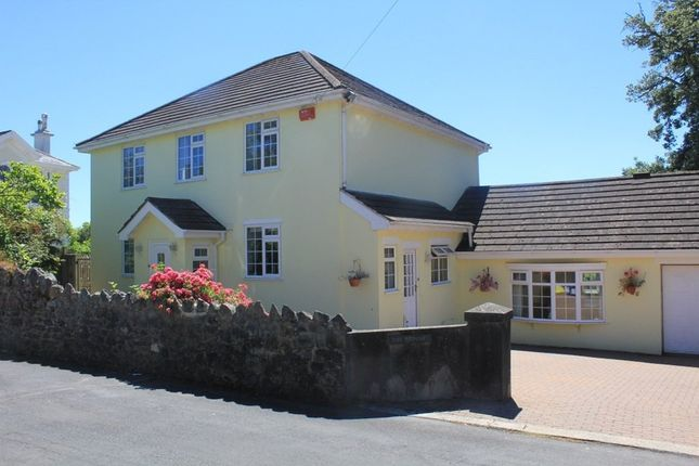 Thumbnail Detached house for sale in Lonsdale Road, Decoy, Newton Abbot