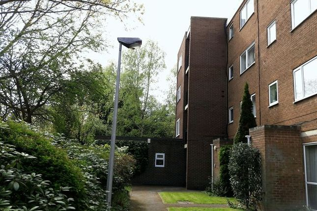 Photo 11 of Selwood Flats, Doncaster Road, Rotherham S65