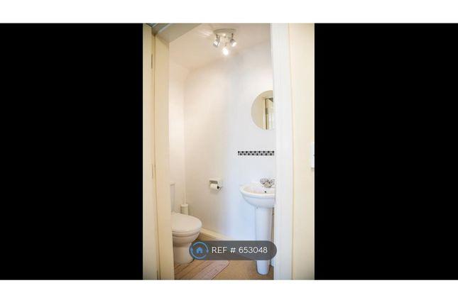 Downstairs Washroom B