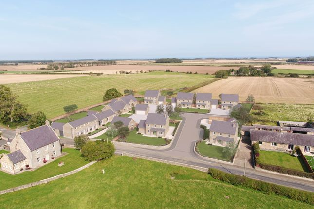 Thumbnail Detached house for sale in Rennington, Alnwick, Northumberland