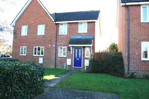 Thumbnail Semi-detached house to rent in Constantine Road, Ashford, Kent