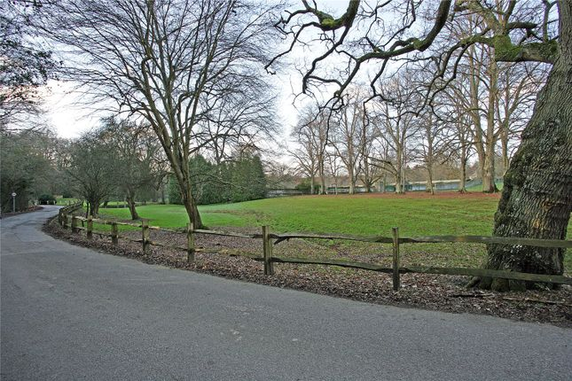 Driveway of Slaugham Manor, Slaugham, West Sussex RH17
