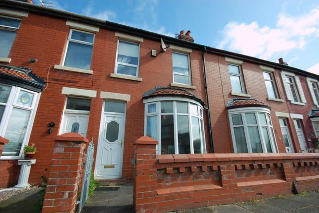 Thumbnail Terraced house to rent in Alder Grove, Blackpool