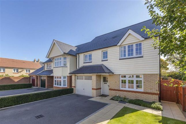Thumbnail Detached house for sale in Harold Avenue, Hailsham