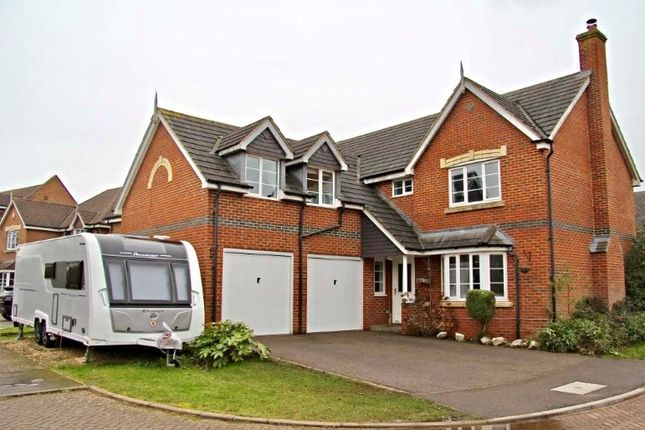Thumbnail Detached house for sale in Foxglove Close, Northampton
