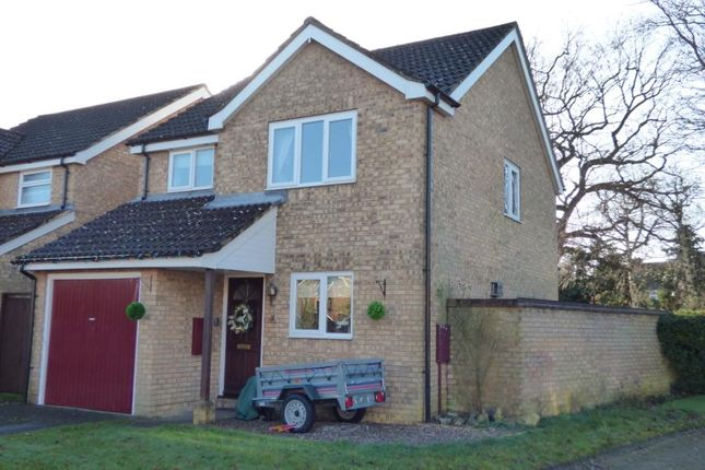 Thumbnail Detached house for sale in Briardene Court, Totton