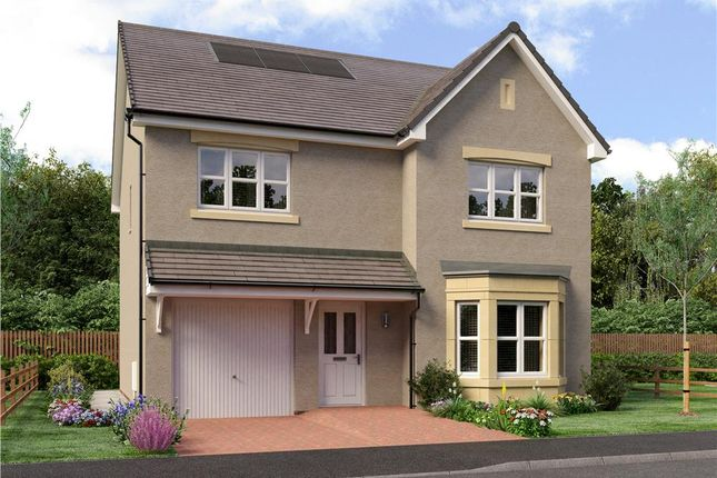 "Thumbnail Detached house for sale in ""Dale"" at Dalkeith"
