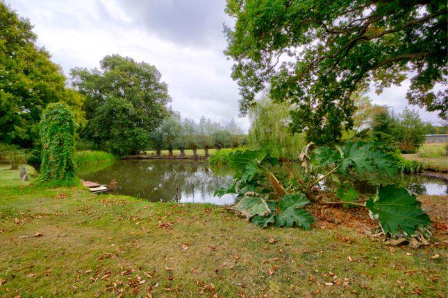 Garden of Bethersden, Ashford TN26