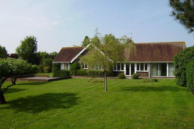 4 bed bungalow to rent in Hoe Lane, Flansham, Bognor Regis
