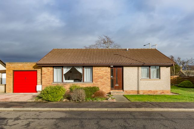 Thumbnail Bungalow for sale in Dunrossie Terrace, Montrose
