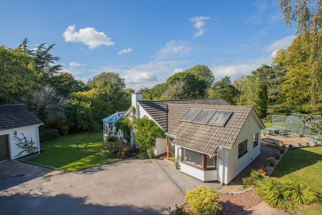 Thumbnail Bungalow for sale in Westerland Marldon, Torquay