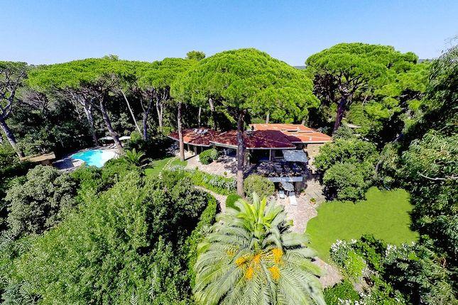 Thumbnail Property for sale in Pineta di Roccamare, Castiglione Della Pescaia, Tuscany