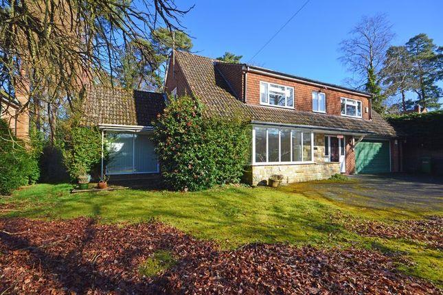 Thumbnail Detached house for sale in Furze Vale Road, Headley Down, Bordon