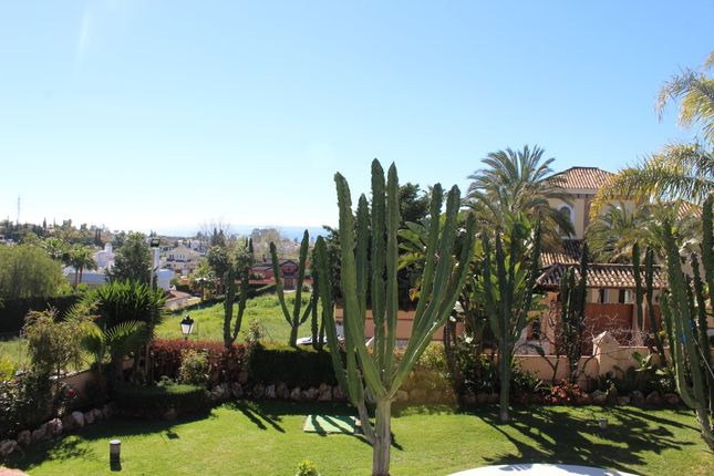 Garden 3 of Bel-Air, Marbella, Málaga, Andalusia, Spain
