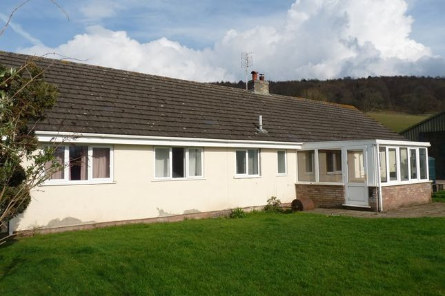 Thumbnail Detached bungalow to rent in Cathedine, Brecon