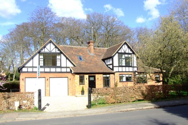 Thumbnail Detached house to rent in Ellwood Road, Beaconsfield
