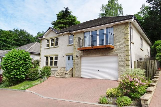Thumbnail Detached house for sale in Inglewood Gardens, Alloa