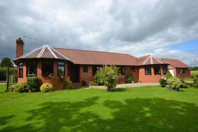 Thumbnail Detached bungalow for sale in Nash, Tenbury Wells