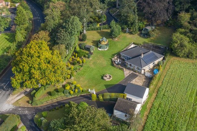 Thumbnail Bungalow for sale in Tree Tops, Wentbridge, Pontefract