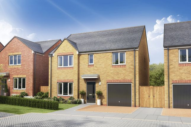 """Thumbnail Detached house for sale in """"The Whithorn"""" at Glenboig Road, Gartcosh, Glasgow"""
