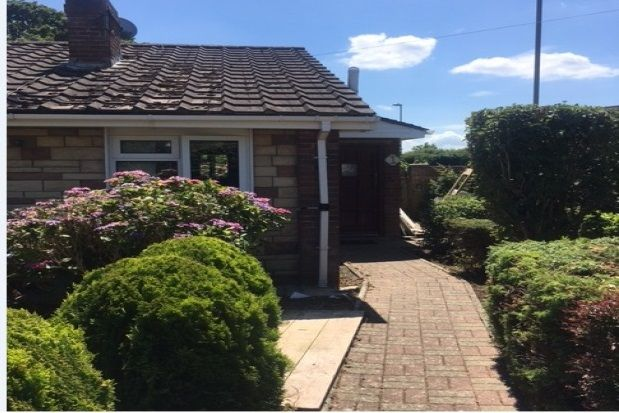 Thumbnail Bungalow to rent in Albretia Avenue, Cowplain, Waterlooville