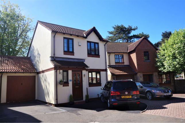 Thumbnail Link-detached house for sale in Mulberry Close, Paignton