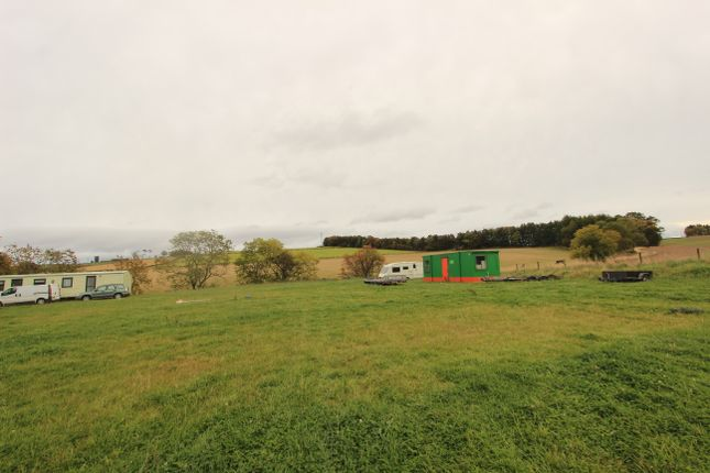 Thumbnail Land for sale in Craigrothie, Cupar