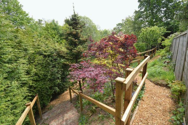 Photo 14 of Southlands Park, Midhurst GU29