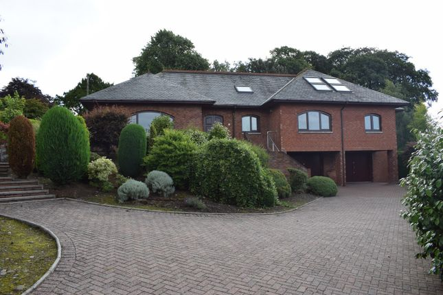 Thumbnail Detached bungalow for sale in Corberry Park, Dumfries