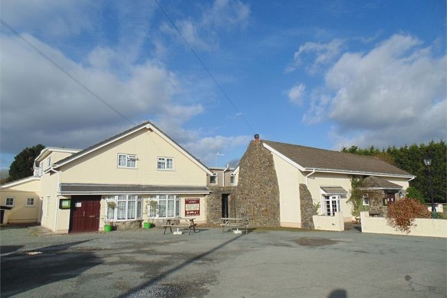 Thumbnail Detached house for sale in The Silverdale, Vine Road, Johnston, Haverfordwest, Pembrokeshire