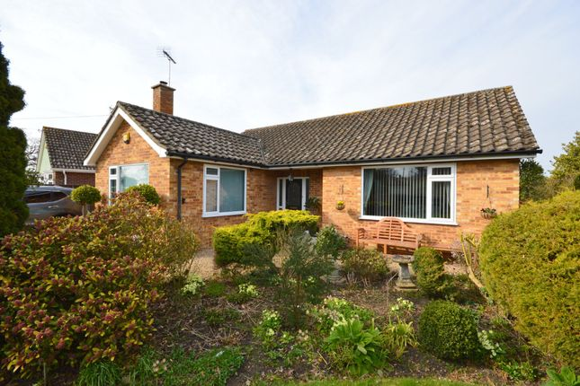 Thumbnail Detached bungalow for sale in School Lane, Great Horkesley, Colchester