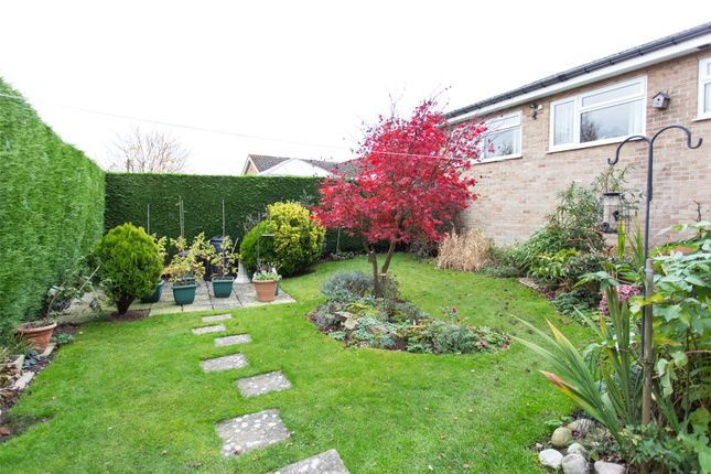 Garden of Westover Road, Sandygate, Sheffield S10