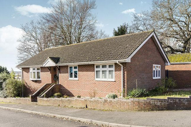 Thumbnail Bungalow for sale in Squires Walk, Southampton