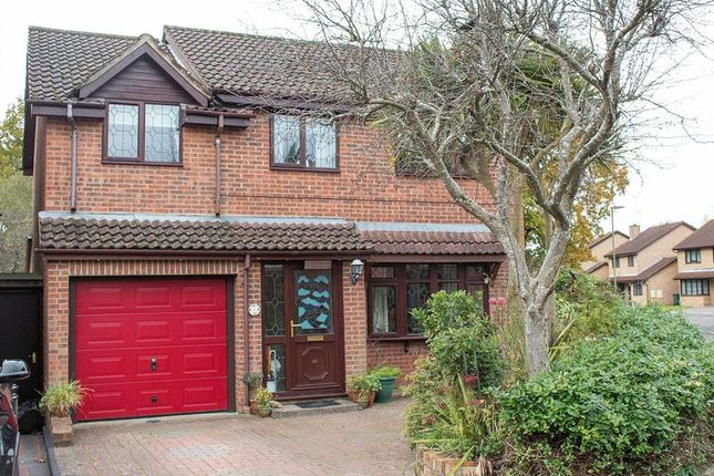 Thumbnail Detached house for sale in Peregrine Close, Totton, Southampton
