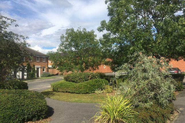 Thumbnail Flat to rent in Nicholas Gardens, York, North Yorkshire