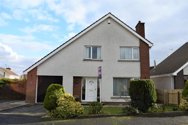 Thumbnail Detached house for sale in The Glade, Portadown