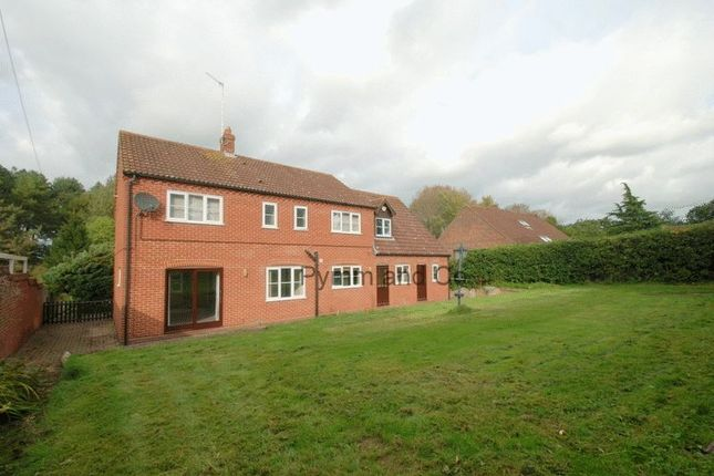Thumbnail Detached house to rent in Lower Street, Salhouse, Norwich