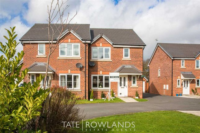 Thumbnail Semi-detached house for sale in Bilberry Grove, Buckley