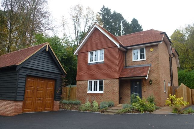 Thumbnail Detached house to rent in Tilford Road, Hindhead