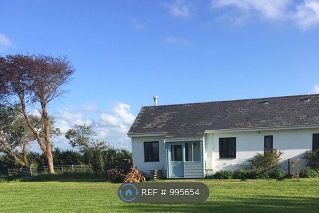 Thumbnail Semi-detached house to rent in Velator, Braunton