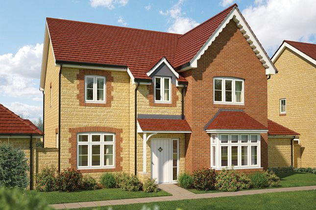 "Thumbnail Detached house for sale in ""The Birch"" at Gainsborough, Milborne Port, Sherborne"