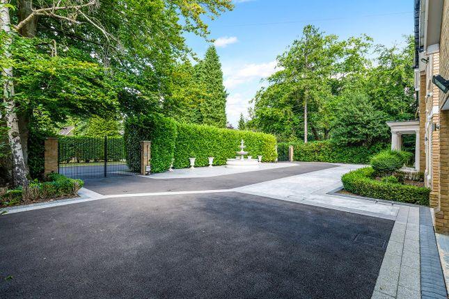 Warren Drive Kingswood Kt20 7 Bedroom Property To Rent