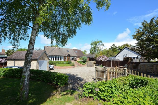 Thumbnail Detached house for sale in Bannister Green, Dunmow