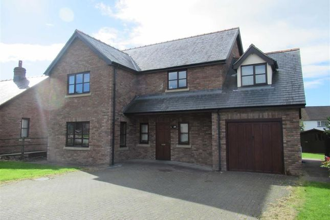 Thumbnail Detached house to rent in 7, Parc Derw, Bryndu Rd, Llanidloes, Powys