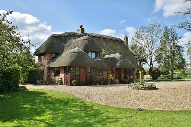 Thumbnail Detached house for sale in Mockbeggar Lane, Ibsley, Ringwood