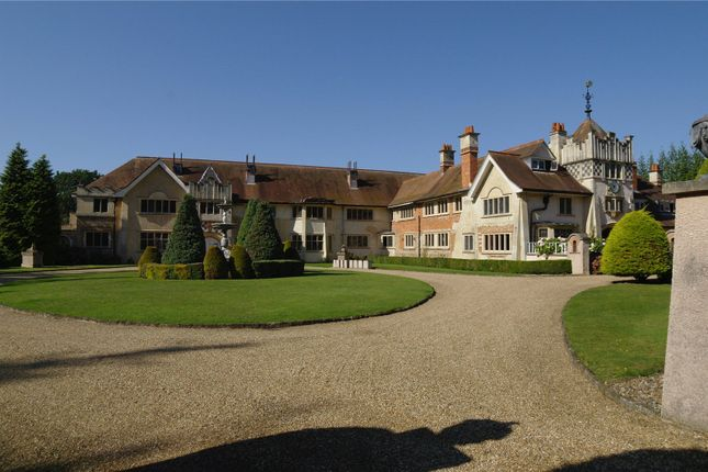Thumbnail Equestrian property for sale in Englefield Green, Surrey