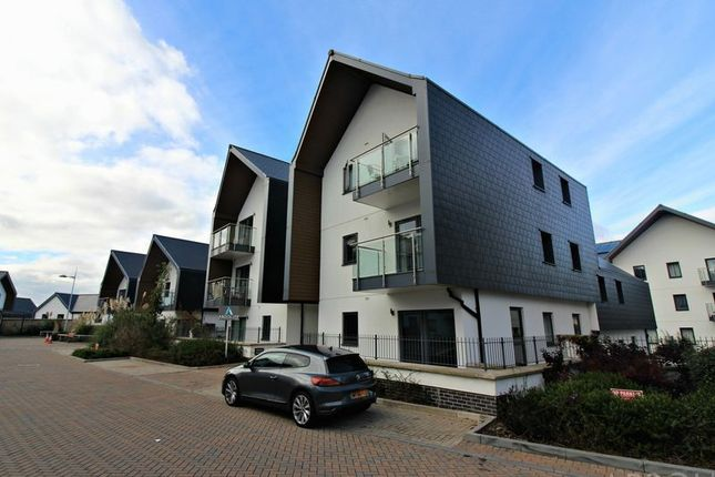 Thumbnail Flat to rent in Willowfield Road, Torquay